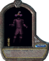 Harrower Mage Set.png